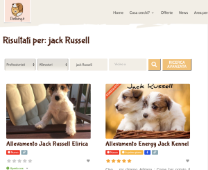 jack Russell prezzo cuccioli
